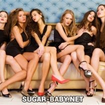 Sugar Baby in New York